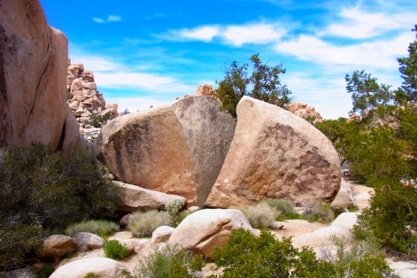 ジョシュア・ツリー国立公園の岩