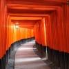 京都伏見稲荷大社の千本鳥居